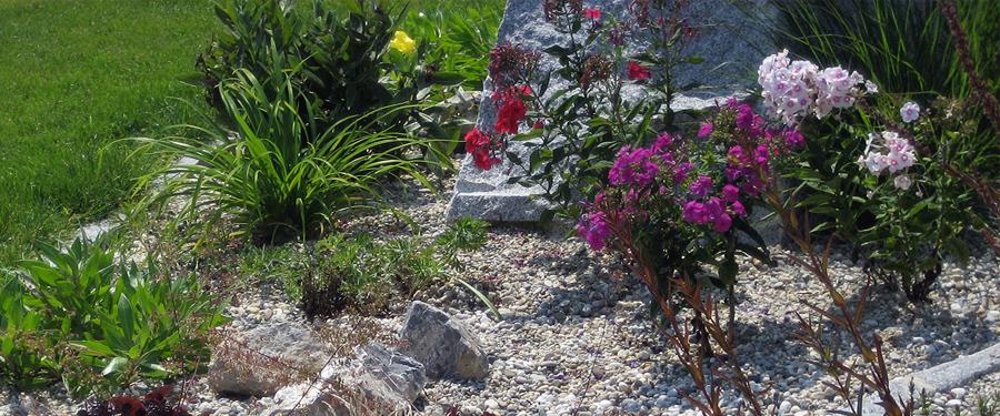 Gartengestaltung Rosenauer Scheibbs: Dienstleistungen